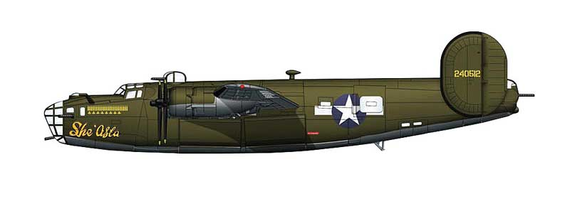 "B-24D Liberator ""She'Asta,"" 530th BS, 380th BG, 5th Air Force, 1943 (1:144)"