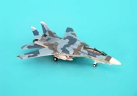 F-14A USN Naval Fighter Weapon School Splinter (1:200)