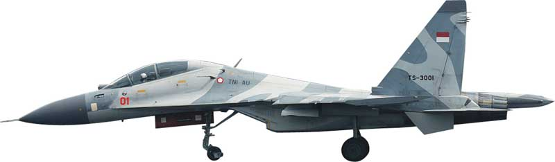 SU-30MK Indonesia Air Force TS-3001 (1:72)
