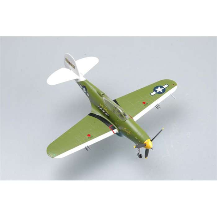 P-39 Lt Col William Shomo Trg 1944 (1:72)