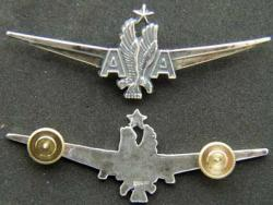 American Airlines Captain Pilot wing sterling silver