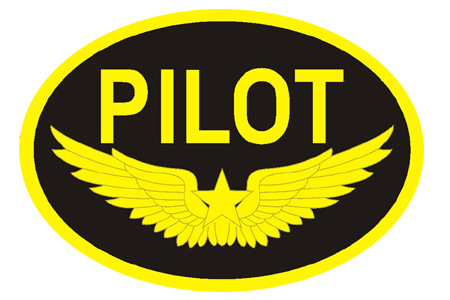 PILOT Goldwings Patch (Iron on)