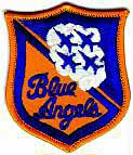 Blue Angels Patch