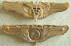 WWII Flight Surgeon Wings Sterling w Gold, Weingarten Gallery Item Number P-771G
