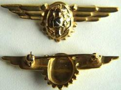 WWII Navy Flight Nurse Sterling w Gold, Weingarten Gallery Item Number P-1176