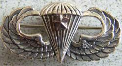 Paratrooper with one combat star Sterling, Weingarten Gallery Item Number P-1272-1