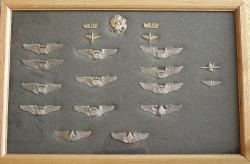 Complete set of WASP wings Sterling, Weingarten Gallery Item Number WASP-Set