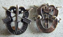 Special Forces Skull DI Sterling, Weingarten Gallery Item Number P-1420
