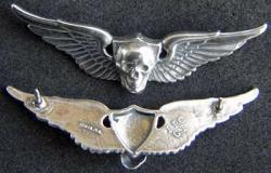 Vietnam SF SOG RT Florida wing badge sterling, Weingarten Gallery Item Number P-1817