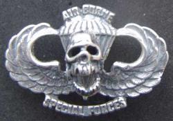 Vietnam SF Air Borne Paratrooper Skull Badge Sterling, Weingarten Gallery Item Number P-1634S