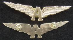 WWI British Royal Naval Air Service Pilot Wing, Weingarten Gallery Item Number P-2229