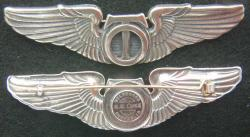 WWII Technical Observer Wing Sterling K. G. Luke Design, Weingarten Gallery Item Number P-1898T
