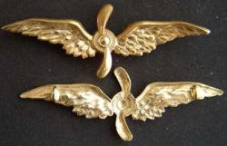 WWI French Badge Air Companies Sterling/Gold, Weingarten Gallery Item Number P-1716