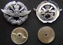 WWI Imperial Russian Pilot Wing Sterling, Weingarten Gallery Item Number P-1834