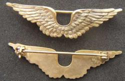 1919 Flying Instructor Wings, Weingarten Gallery Item Number P-2017