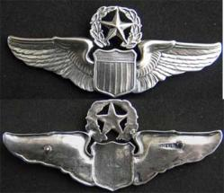 USAF Command Pilot Sterling Wings, Weingarten Gallery Item Number P-1680C